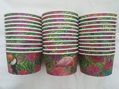 24 x ICE CREAM TUBS CUPS Party Van Parlour