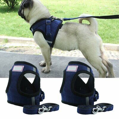 Dog Harness Leash Set Mesh Cute Walking Cat Puppy Kitten Pet Comfort Vest KU