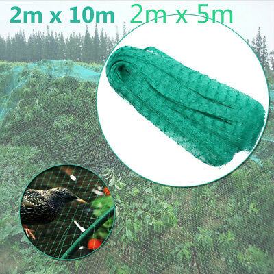 2X5M 2X10M Garden Netting Anti Bird Net Protection Veg Crops Plant Fruit