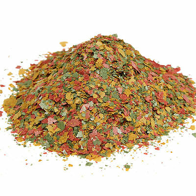 1 Bag Fresh Tropical Fish Flakes Food 100g AF BULK Tank Aquarium awesome JG