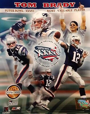 aee123f7c TOM BRADY Limited Edition SUPER BOWL XXXVI MVP 8x10 Photo NEW ENGLAND  PATRIOTS