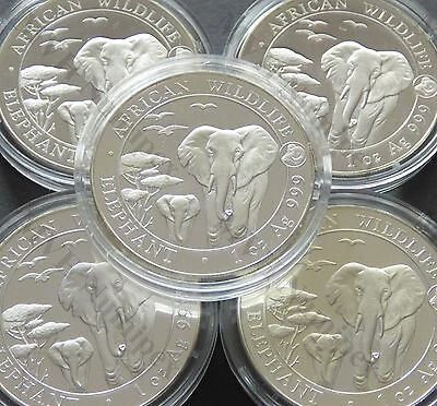 Somalia 2015 African Wildlife Elephant Privy Year of the Goat 1 Oz Silver Coin