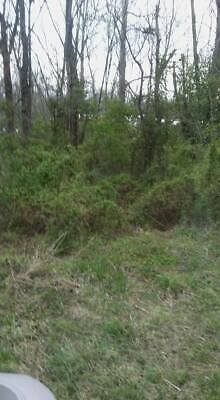 Land for sale martinsville in