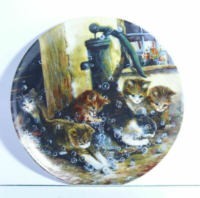 Collection Plate Seltmann Weiden Cat Schäumender Fun - Certificate Boxed