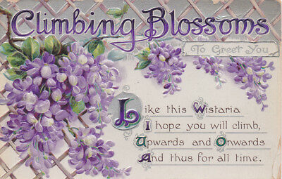 Vintage 'Climbing Blossoms' embossed postcard B.B. London Series No 414