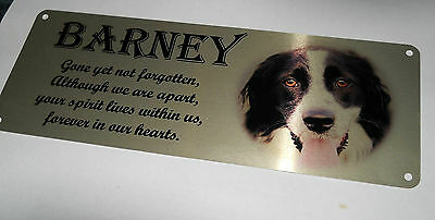 Pet memorial bench plaque with photo, Aluminium, rememberance, grave marker