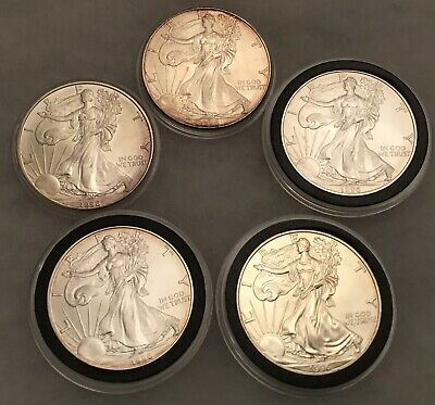 1996 American Silver Eagle coin lot of 5 coins in air tight capsules (C)