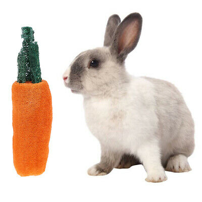 Hamster Chew Toy Natural Grass Carrot For Rabbit Guinea Pig Chinchilla RDR