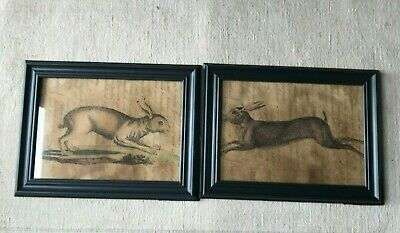 Set Of 2 Primitive Grungy Rabbit Hare Prints Spring Easter Country Decor
