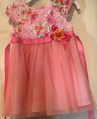 Rare Editions 24 Months Baby Toddler Girls Dress Pink Multicolored Formal Party
