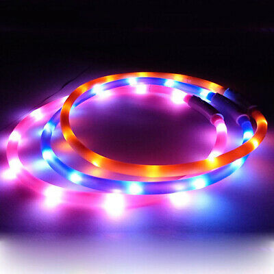 Rechargeable LED COLOR Light Up Pet Dog Cat Neck Collar Night Flashing Safety