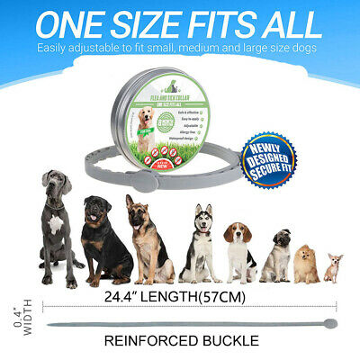 Seresto Dogs Cats Up To 8 Month Flea and Tick Collar 57CM Long Water Resistants