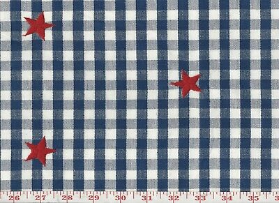 Roth & Tompkins Overstock Upholstery Fabric Blue Check with Embroidered Stars