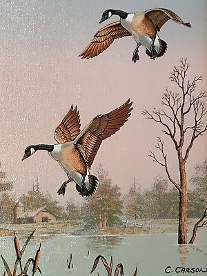 C Carson Painting 8x10 Canadian Goose