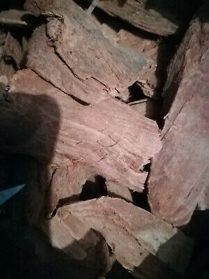 Mimosa Hostilis Root Bark 100g in small wood chips