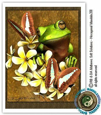 © ART laminated collage Green Tree Frogs ACEO collector card by Di Ltd.Ed