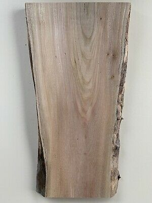 WOODTURNING FIGURED Character TIMBER Bowl  BLANK Elm Craft Plinth