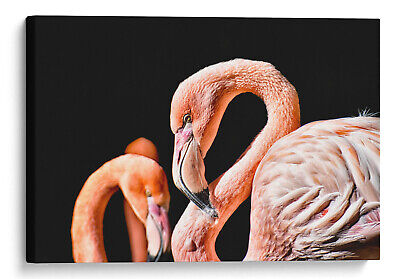 Flamingo Canvas Pink Brids Animal Kingdom Wall Art Picture Home Decor Giclee