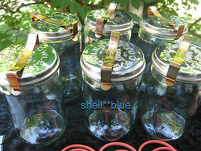 SIX  Fowlers Vacola  **STAINLESS LID** Preserving Jars #31 COMPLETE RING CLIP