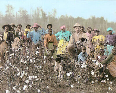 """SOUTHERN COTTON PLANTER & PICKERS 1908 8x10"""" HAND COLOR TINTED PHOTOGRAPH"""