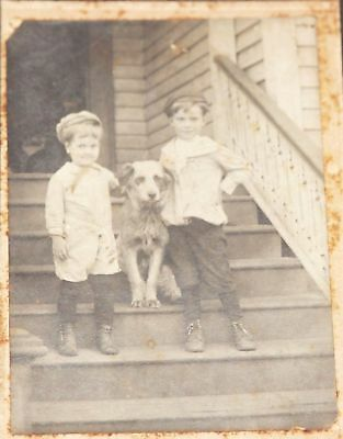 Antique Cabinet Card Photo - 2 Boys Brothers w/ Family Dog on Steps -Silver Tint