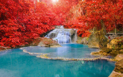 Red leaf Waterfall Landscape Wall Art Print Painting on Canvas Living Room Decor
