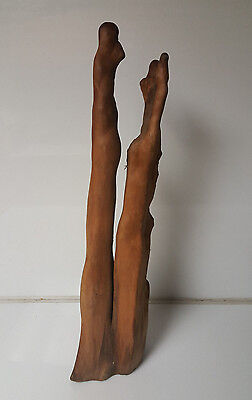 "Cypress Knee wood beautiful shape over 24"" tall"