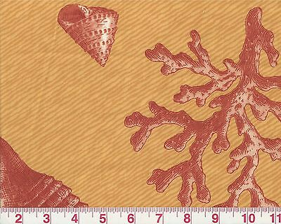 Overstock - Sea Shells P Kaufmann Drapery Upholstery Fabric Big Sur Shell