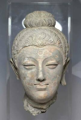 A grey Stucco Head of a Buddha, Hadda, Gandhara, 4th - 5th century AD