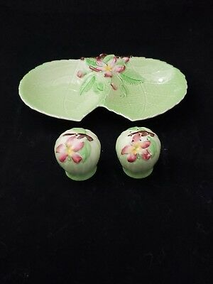 Vintage Carlton Ware Australian Design APPLE BLOSSOM Salt Pepper Relish Dish