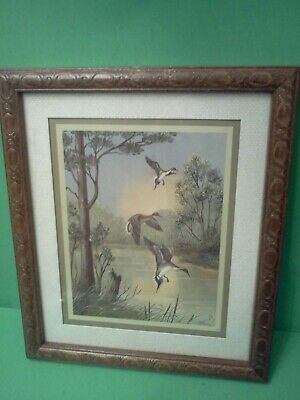 Vintage Red Head Duck Print Signed and Custom Ornate Framed