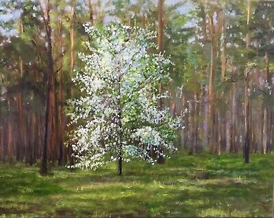 "Original Oil Painting, Landscape, FOREST BEAUTY (wild appletree) 16x20"". Schelp"
