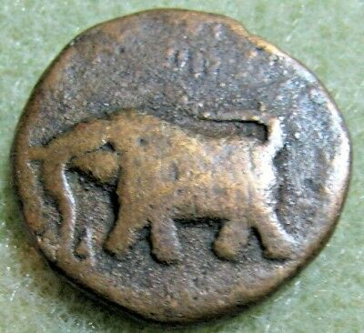 Ancient Indian coin;  Great Elephant
