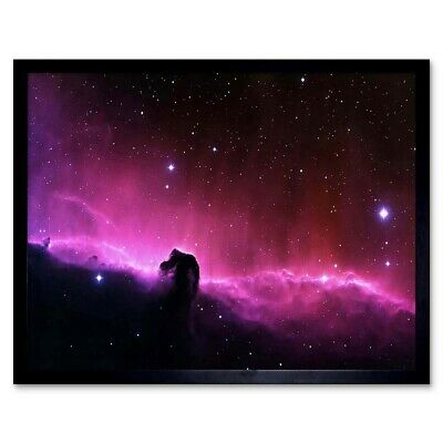 Space Cygnus Loop Nebula Star Gas Astronomy 12X16 Inch Framed Art Print