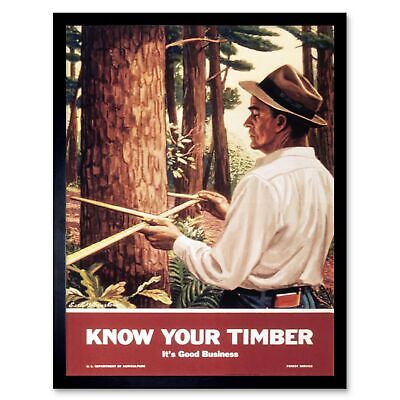 Propaganda Political Timber Tree Log Forest 12X16 Inch Framed Art Print