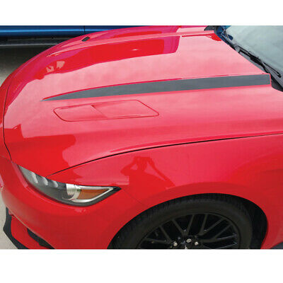 Hood Line Accent Vinyl Decal 2015//2016//2017 Mustang HLSM