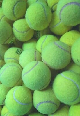 30 Used Tennis Balls. Machine Washed So Chemicals That Burn Dogs Mouths Removed