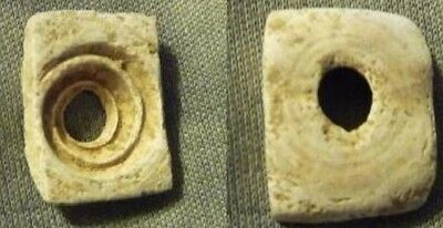 Israel Chalcolithic ancient Shell Bead 4th millennium BC.original cut from shell