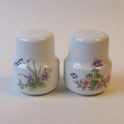 Oneida China Romance of Flowers Salt and Pepper Shakers