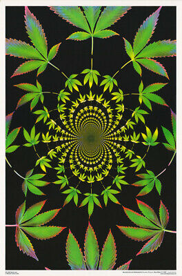MAGIC VALLEY #3397 LP35 W FREE SHIP MARIJUANA THEME:PSYCHEDELIC 2 POSTERS