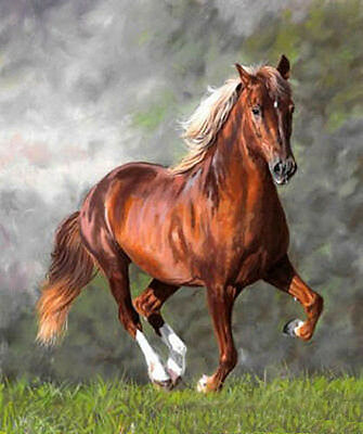 """No framed oil painting nice running red horse in spring landscape canvas 24""""x36"""""""