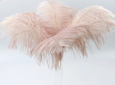 3pcs 35-38cm Dusty Pink OSTRICH Feathers DIY Craft Millinery Vase Wedding Decor