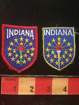 Indiana Patch Lot Of 2 Similar But Different State Patches State Flag Theme 69UU