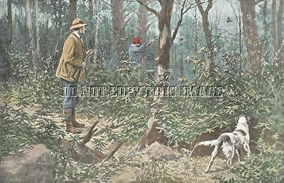 Antique 8 X 10 A B Frost Photograph Print Ruffed Grouse Hunting English Setter 3
