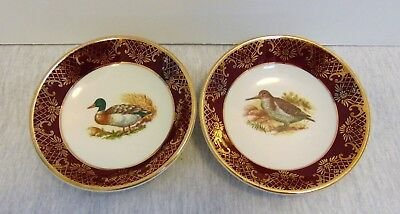 "Set of 2 Weatherby Hanley England Royal Falcon Ware Durability Small 4"" Plate"