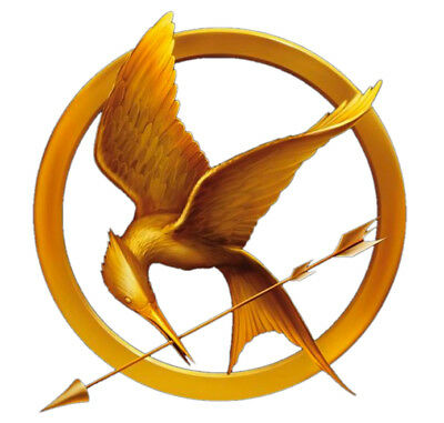 Hunger Games District 12 Gold 9cm x 10cm Patch Embroidered Sew or Iron on Badge