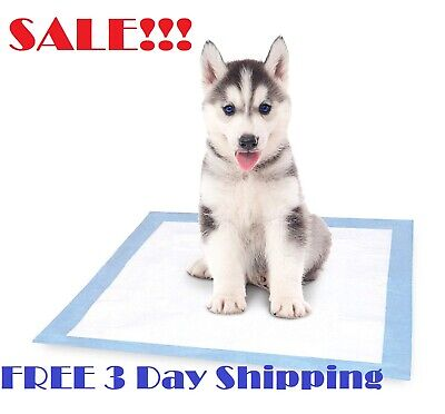Absorb Extra Large XL Pets Training Pads Puppy Dog Pad Potty No Leak Waterproof