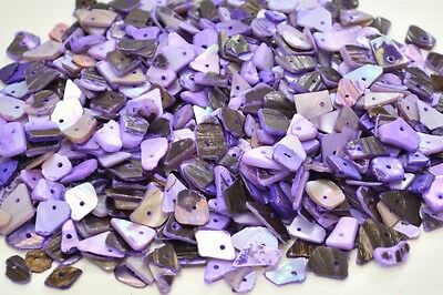 PCS DYED PURPLE MOTHER OF PEARL SHELL BEADS CHARMS #T-2149C 250