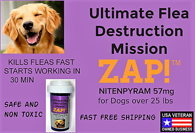 ZAP! Instant Flea Killer 10 Capsules Nitenpyram 57mg Large Dogs >25lb Free Ship