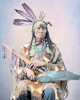 "Wakute Mani Lakota Sioux Native American 1872 8X10"" Hand Color Tinted Photograph"